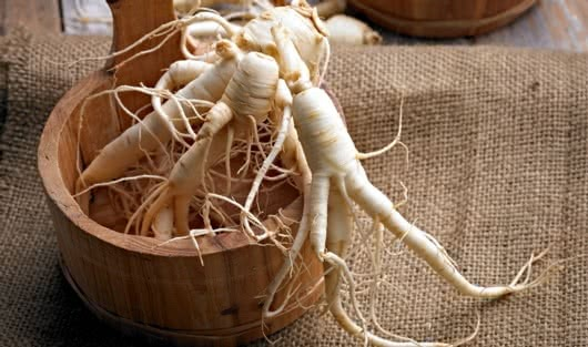 A History Of Ginseng